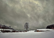 Storm Metal Prints - Winter Blues Metal Print by Evelina Kremsdorf