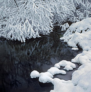 Snowy Brook Art - Winter brook by Elena Filatova