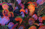 University Of Arizona Pastels - Winter Cactus by Cheryl Whitehall