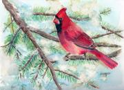 Red Cardinals Framed Prints - Winter Cardinal Framed Print by Arline Wagner