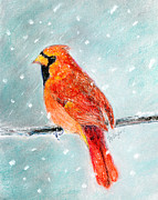Winter Storm Pastels - Winter Cardinal by Flo Hayes