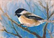 Chickadee Pastels Framed Prints - Winter Chickadee Framed Print by Christine Kane