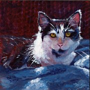 Feline Cat Art Paintings - Winter Comfort by Pat Burns