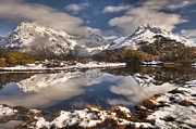 Snow-covered Landscape Photo Posters - Winter Dawn Reflection Of Mount Poster by Colin Monteath