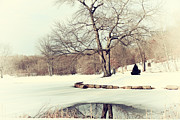 Trumbull Connecticut Prints - Winter Day In The Park Print by Karol  Livote