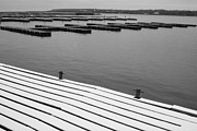 Winter Dock Print by Merv Scoble