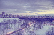 Central Park Winter Prints - Winter Dusk in New York Print by Ariane Moshayedi