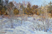 Snowy Trees Paintings - Winter etude by Andrey Soldatenko