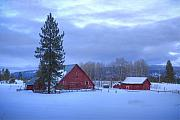 Scenic Idaho Prints - Winter Farmscene Print by Idaho Scenic Images Linda Lantzy