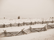 Old Fence With Snow Prints - Winter Fence in Oregon Print by Carol Groenen