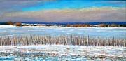 Winter Fields With Snow Fence Print by Bob Richey