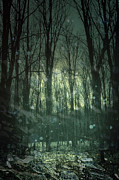 Atmospheric Prints - Winter forest at twilight Print by Sandra Cunningham