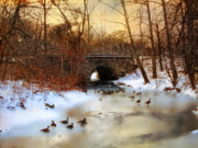 Winter Landscape Digital Art Prints - Winter Geese Print by Jessica Jenney