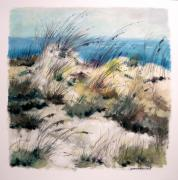 Sand Dunes Drawings Prints - Winter Grasses Print by John  Williams