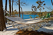 Susan Leggett Prints - Winter Hammock Print by Susan Leggett