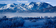 Morning Fog Prints - Winter in Ogden Valley in the Wasatch Mountains of Northern Utah Print by Utah Images