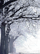 Fog Mist Paintings - Winter in our street by Stefan Kuhn