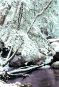 Wintry Photo Prints - Winter in Shenandoah Print by Thomas R Fletcher