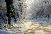 Dirt Road Framed Prints - Winter In Small Countryside Road Framed Print by © Frédéric Collin