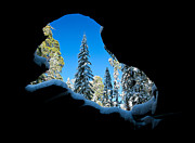 Sequoia National Park Prints - Winter Inside Out Print by Adam Pender