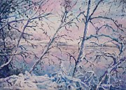 Winter Scenes Pastels - Winter Lake Through the Branches  by Barbara Smeaton