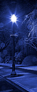 Winter Storm Photos - Winter Lamp Post Blues by John Stephens