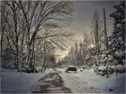 Mikki Cucuzzo Metal Prints - Winter Landscape Metal Print by Mikki Cucuzzo