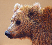 Grizzly Pastels Prints - Winter Light Print by  Ann Jeffree