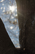 Off The Beaten Path Photography - Andrew Alexander - Winter Light
