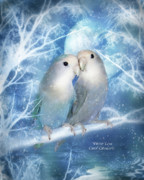Lovebird Posters - Winter Love Poster by Carol Cavalaris