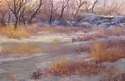 Bill Puglisi - Winter Marsh...