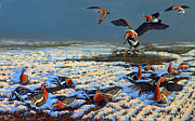 Red Birds In Snow Prints - Winter Morning in Primorska Dobrudja Print by Valentin Katrandzhiev