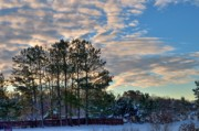 Snow Drifts Photos - Winter Morning by Paulette Wright