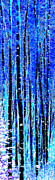 Winter Night Digital Art Posters - Winter Night In An Aspen Grove Poster by Terril Heilman