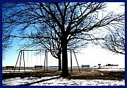 Swingset Framed Prints - Winter on the Sound Framed Print by Trilby Yates