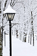 Lightpost Framed Prints - Winter park Framed Print by Elena Elisseeva