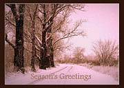 Snowy Road Posters - Winter Pink Seasons Greetings Poster by Carol Groenen