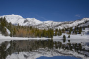 Panoramic Art - Winter Refelctions by Mark Smith