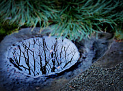 Puddle Prints - Winter Reflections Print by Ellen Cotton