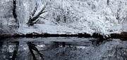 Children Crafts Prints - Winter Reflections Print by Steven Milner