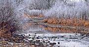 Fort Collins Art - Winter River by Bruce Gilbert