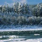 Christmas Holiday Scenery Art - Winter River by Pavel  Filatov