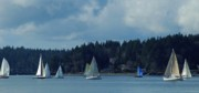 Winter Sailing In Puget Sound Print by Lori Seaman