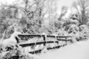 Snow Scene Prints - Winter Scene Print by Kathy Jennings