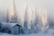 Snowstorm Photos - Winter scene by Kati Molin