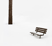 Park Bench Framed Prints - Winter Scene Framed Print by Steve Gadomski