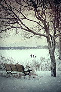 Outside Ice Framed Prints - Winter scene with with bench and tree Framed Print by Sandra Cunningham