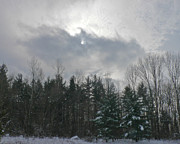 The Nature Center Prints - Winter Sky Print by Paul Roger Ballard