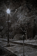 Lamp Post Prints - Winter Storm Sentinel Print by John Stephens