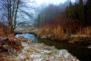 Winter Landscapes Art - Winter Stream by Barbara  White